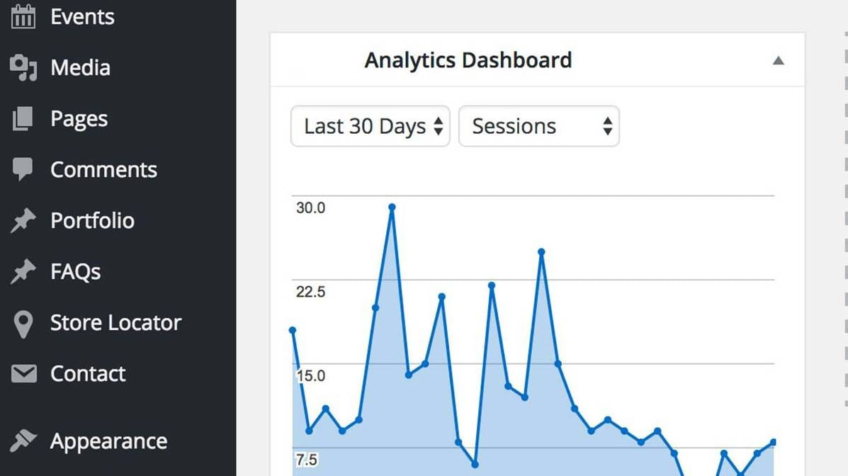 Site Analytics in WordPress Dashboard pic