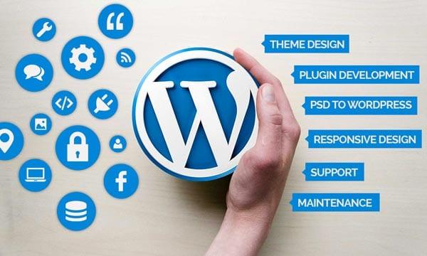 custom-wordpress-website